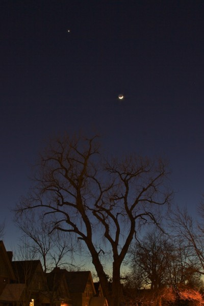 Beth Partin's photography, moon hanging from a star, night photography, night sky