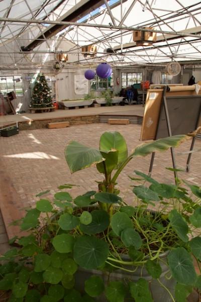 Growhaus GrowAsis meeting space Dec 2014
