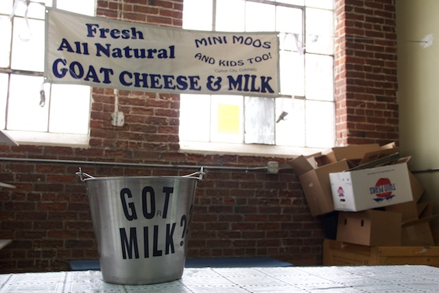 Unwashed Duck Eggs and Spraying Billygoats: Another Market at Denver Urban Homesteading