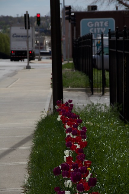 Tulips on Troost Challenges View of Avenue as Unsafe