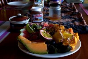 Epiphyte fruit plate Australia Sept 2015